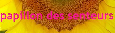 17_papillondessenteurs