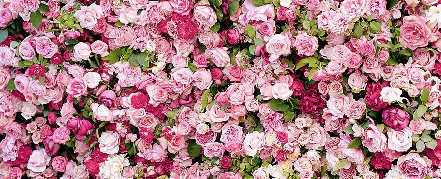 roses_dior
