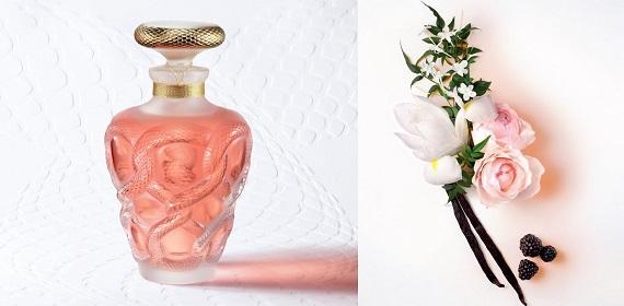 Nouveautés Lalique 2017
