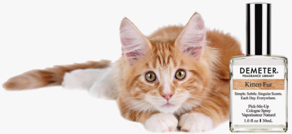 parfum chat kitten fur demeter