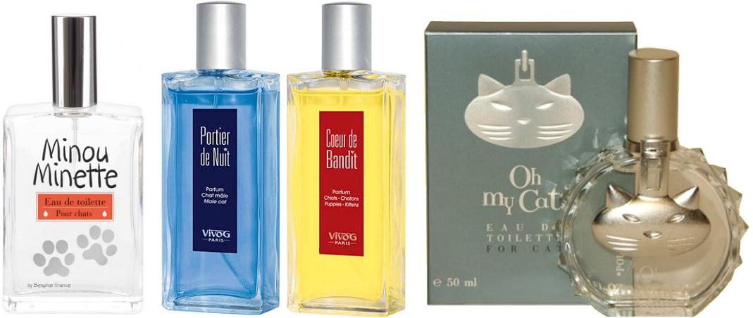 parfums pour chats