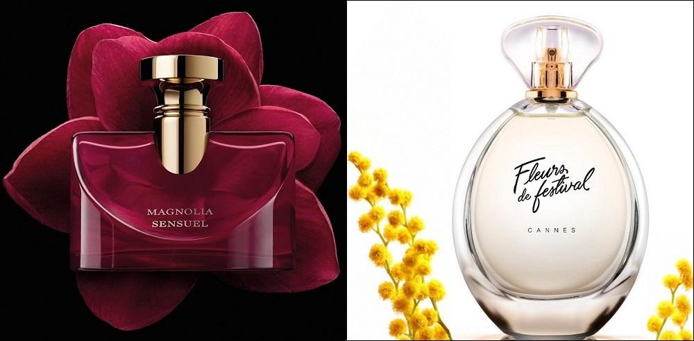 magnolia sensuel fleurs de festival