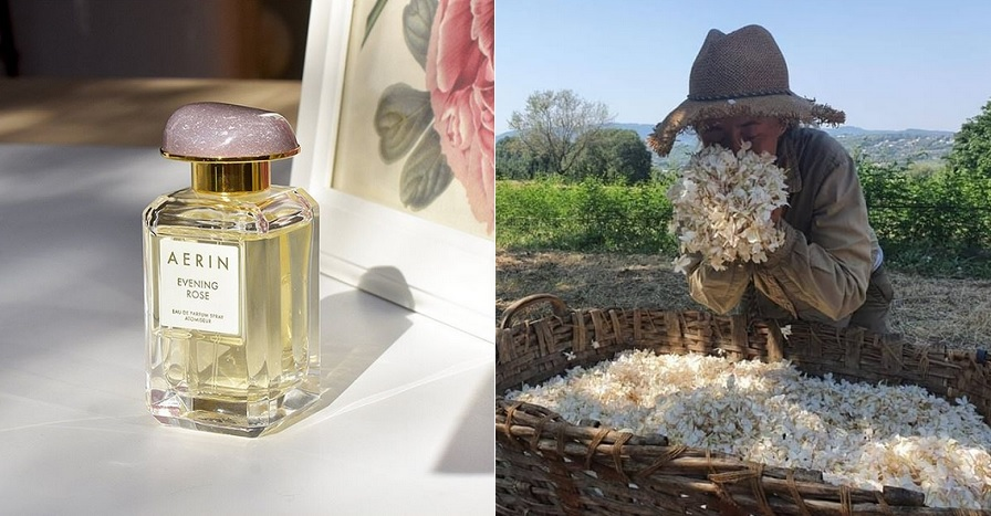 instagram sites parfums 2